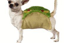 doggy:)