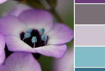 kleurencombinatie's
