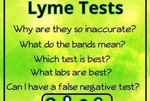 Fibromyalgia & Lymes Disease