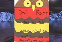 owls / by Melissa Martinez