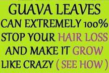 GuavaLeaves