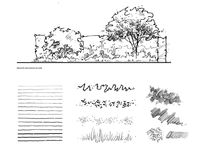 Drawing for landscape