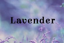 Lavender Oil / Lavender, an oil which fragrance has a hint of nostalgia, is recognized for its relaxing, soothing and aromatherapeutic properties.