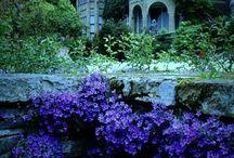 ~Secret garden~