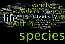 Species biodiversity / Nature to defend