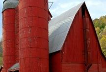 RED BARNS / by Patricia McElroy