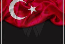 26 eylül türk dil bayramı webstil adana