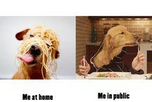 At home vs in public