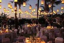 Summer Weddings Ideas / Summer Wedding ideas. From locations to appetizers, there are ideas galore.