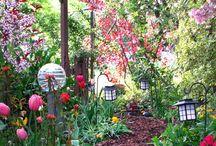 my mother's garden...