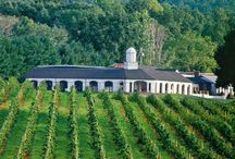 Virginia Wineries
