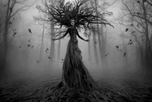 """Fairy / """"We are the granddaughters of the witches you weren't able to burn."""""""