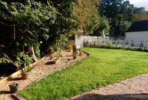 Lush Gardens / 0