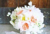 Flowers / by Justina Lee