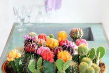 Enfeites de Mesa - Inspiração / Enfeites de mesa diferentes, inspiradores, com criatividade e afeto.