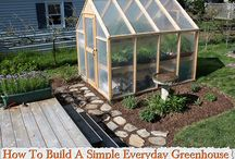 Drivhus / greenhouse