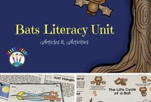 Read Well Unit 13/14: Bats & Spiders