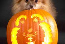Crazy For Carving Pumpkins