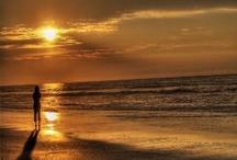 Myrtle Beach / by Cheryl Yacovoni