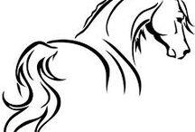 sojaci kon