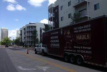 Beautiful Homes / Homes Around Tampa Bay