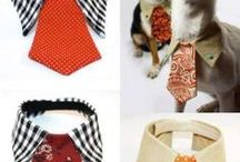 Dog stuff to make