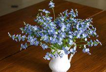Мелкие цветы (незабудки, сирень...)