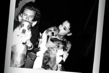Hariana / Harry&Ariana