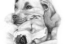 σκυλι α