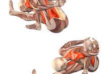 Joga anatomia