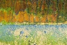 Texture and Color / by Susie Carlson