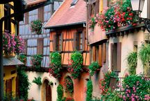Alsac Frankrike
