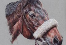 My drawings of dogs, cats and horses / A collection of my portrait drawings of animals