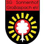 sonnenhof-grosaspach-vs-bayer-leverkusen
