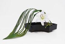 ikebana / tradiční a moderní japonská vazba květin