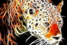 vaso tiger / TIGER