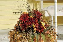 Fall decor / by Mister Landscaper