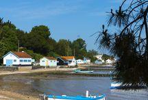 Nouvelle Aquitaine / En longeant la côte ouest, de La Rochelle à Biarritz, on entame un voyage le long des vastes plages de la Nouvelle Aquitaine, ponctué d'une petite escale détente du côté d'Arcachon. Dans ses terres, la région la plus vaste de France se divise entre festivals mythiques - les BD d'Angoulême en tête - et fêtes endiablées - pour ne citer que les ferias de Dax et Bayonne. Question déco, l'esprit récup et le mobilier made in France sont à l'honneur. Tout un programme. #nouvelleaquitaine