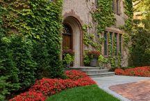 Garden:  Planting combinations