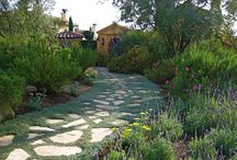 Lakehouse Landscaping Ideas / Ideas to spruce up the lakehouse exterior and possible hot tub.  / by Barbara Jones