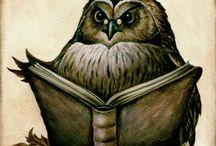 Książki, sowy i inne zwierzaki