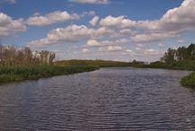 Trebel / Wer Ruhe und Natur sucht, ist auf der Trebel genau richtig: als Grenzfluss zwischen Vorpommern und Mecklenburg bietet sie Stille und eine Artenvielfalt, die man nur erleben statt erahnen kann. Dafür gibt es nur wenige Orte bis zur Mündung in die Peene.