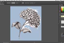 How I digitize my illustrations