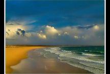 Beaches and Oceans / by Diane Gallardo-Cannella