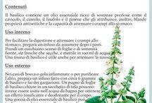 piante aromatiche!!
