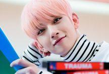 SVT | Joshua ¸.*♡*.¸
