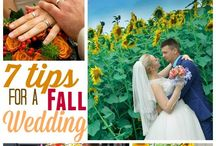 Weddings / How to have a frugal wedding while still haveing the wedding of your dreams!