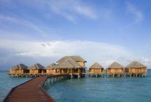 Maldives Hotels & Resorts / by Five Star Alliance