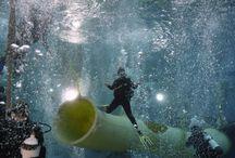 Wasserflöhe / Tauchen Handicap Diver