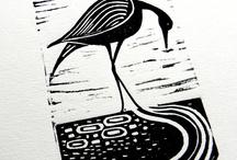 Черно-белое птицы